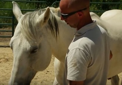 Veterans in the video highlight the effectiveness of EAGALA horse sessions in overcoming challenges.