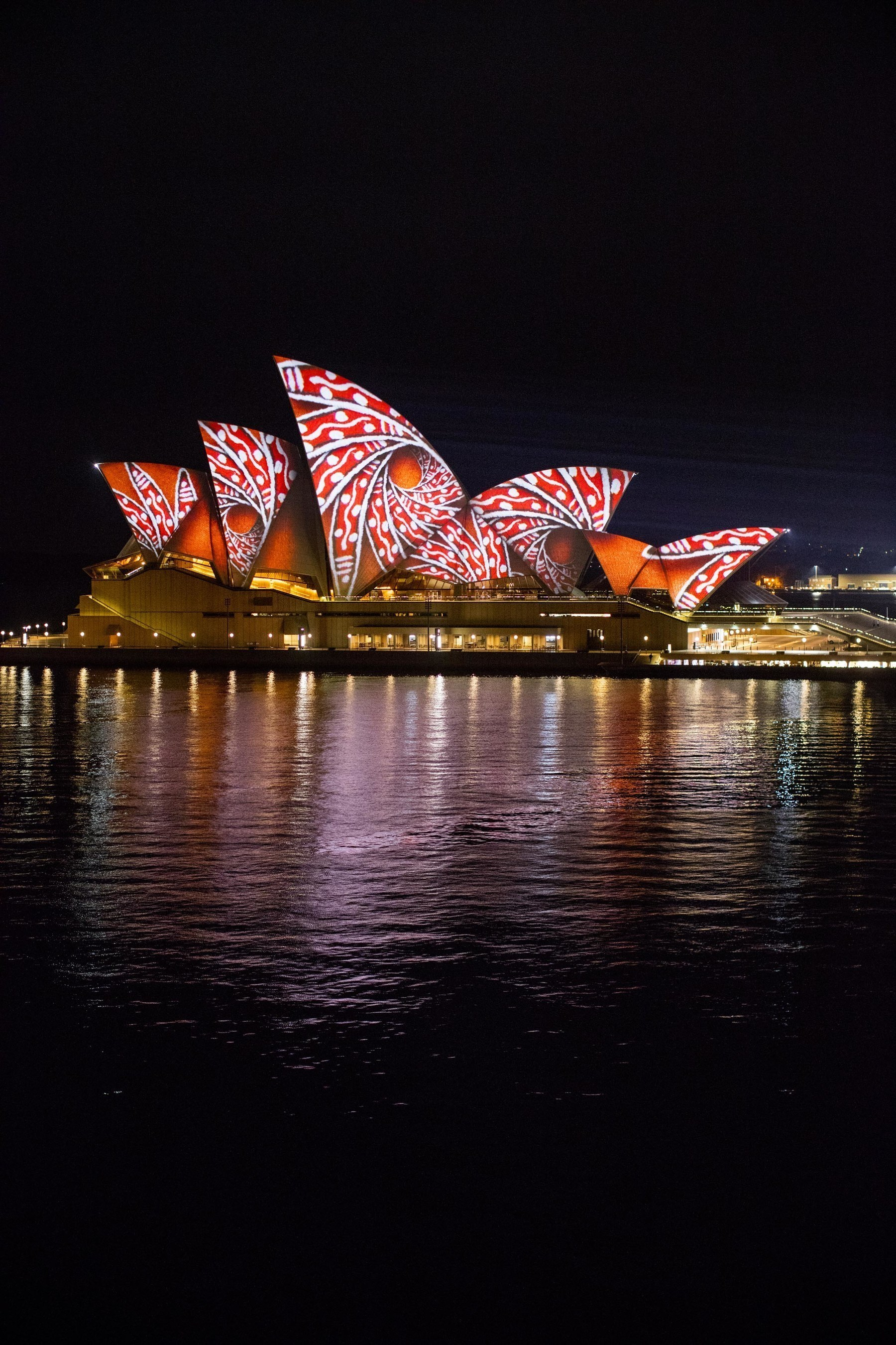 VividSydney_ Songlines_Artist Donny Woolagoodja_credit Destination NSW