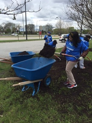 FirstMerit Bank volunteers spread mulch during Chicago beach clean up efforts on Saturday, May 14, 2016.