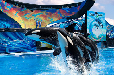 """SeaWorld Entertainment, Inc. (""""SeaWorld Entertainment""""), a leading theme park and entertainment company, today announced the pricing of an initial public offering of 26,000,000 shares of its common stock at $27.00 per share. The shares are expected to begin trading on the New York Stock Exchange on April 19, 2013 under the ticker symbol """"SEAS,"""" and the offering is expected to close on April 24, 2013, subject to customary closing conditions.  (PRNewsFoto/SeaWorld Entertainment, Inc.)"""