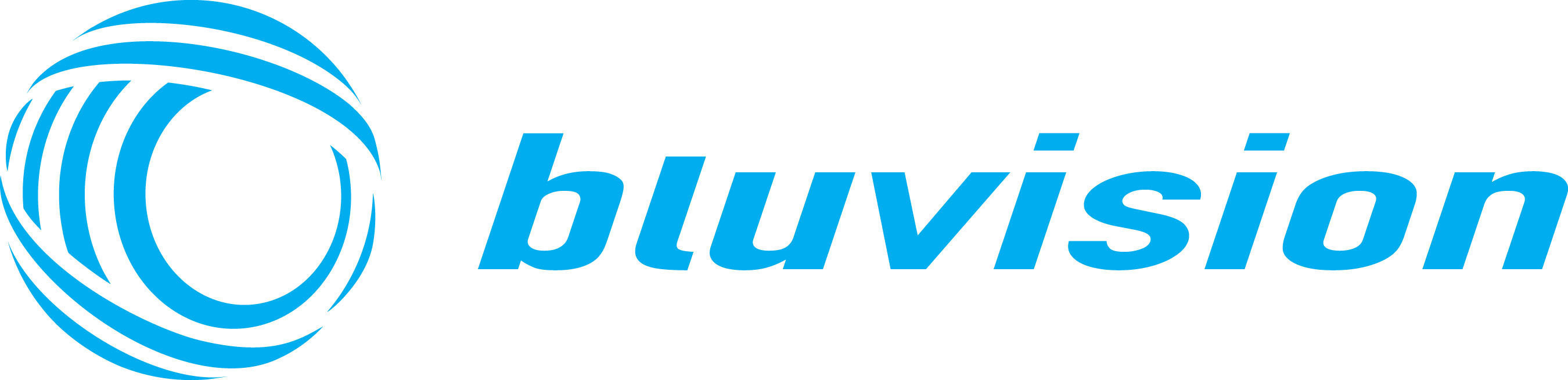 Bluvision logo