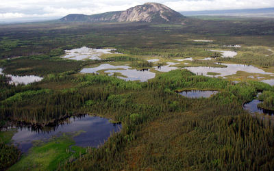 Wetland in the Canadian boreal.