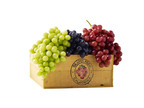 Fall In Love With Grapes This Fall.  (PRNewsFoto/California Table Grape Commission)