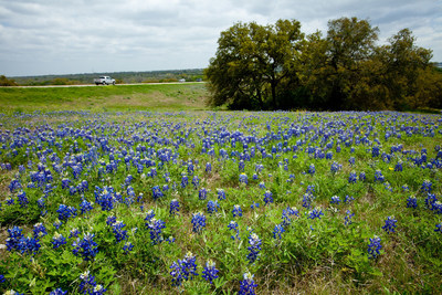 """Bluebonnets herald spring in the Texas Hill Country. New Braunfels, Texas, the vacation destination for generations of Texans, offers a perfect BFF or """"love of your life"""" getaway April-May - warm enough to enjoy water recreation in two beautiful rivers, the world's best water park and a great lake. The perfect time for a tour of the Texas Hill Country wineries or a craft beer tour through the spectacular vistas of wildflowers and migrating birds. Live music throughout with dance halls and..."""