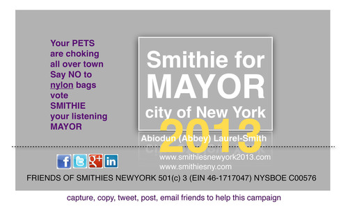Introducing Smithie For Mayor City Of New York