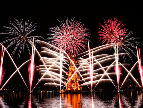 Spectacle of lights, colors and shapes: a large firework display marked the inauguration of the 17th Bradesco ...