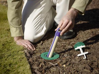 Better Bait Means Better Termite Control