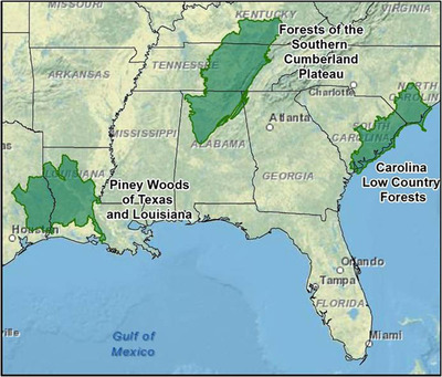 The Forestland Stewards program will focus on three areas in the southeastern U.S.  (PRNewsFoto/National Fish and Wildlife Foundation)