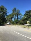 Georgia Power to restore power for nearly 100 percent of customers in Brunswick, Jesup, St. Simons and Jekyll Islands today