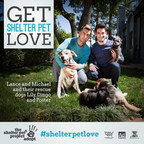Get Shelter Pet Love with Lance Bass