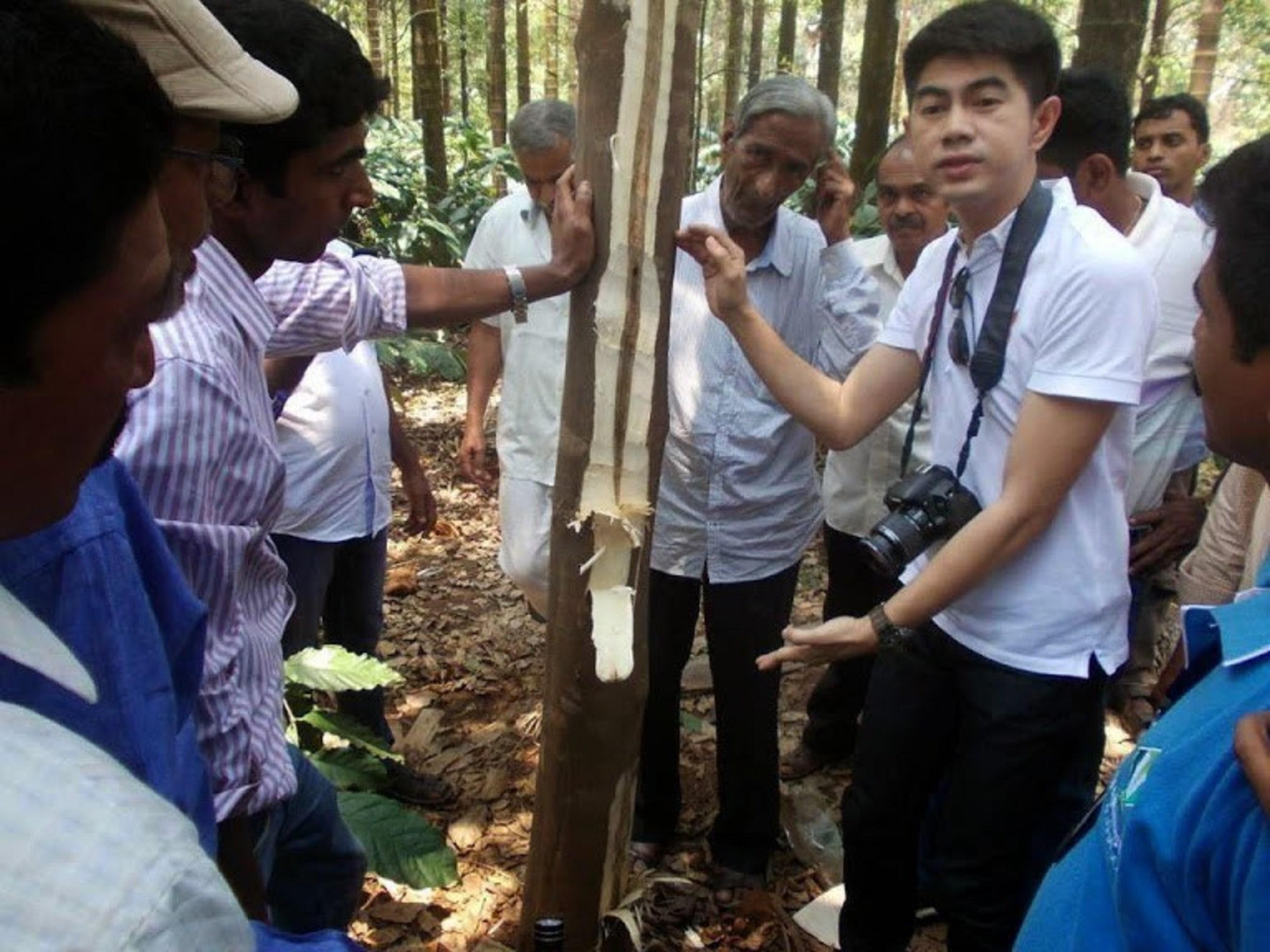 Asia Plantation Capital ouvre la voie en favorisant l'oud durable dans la nature