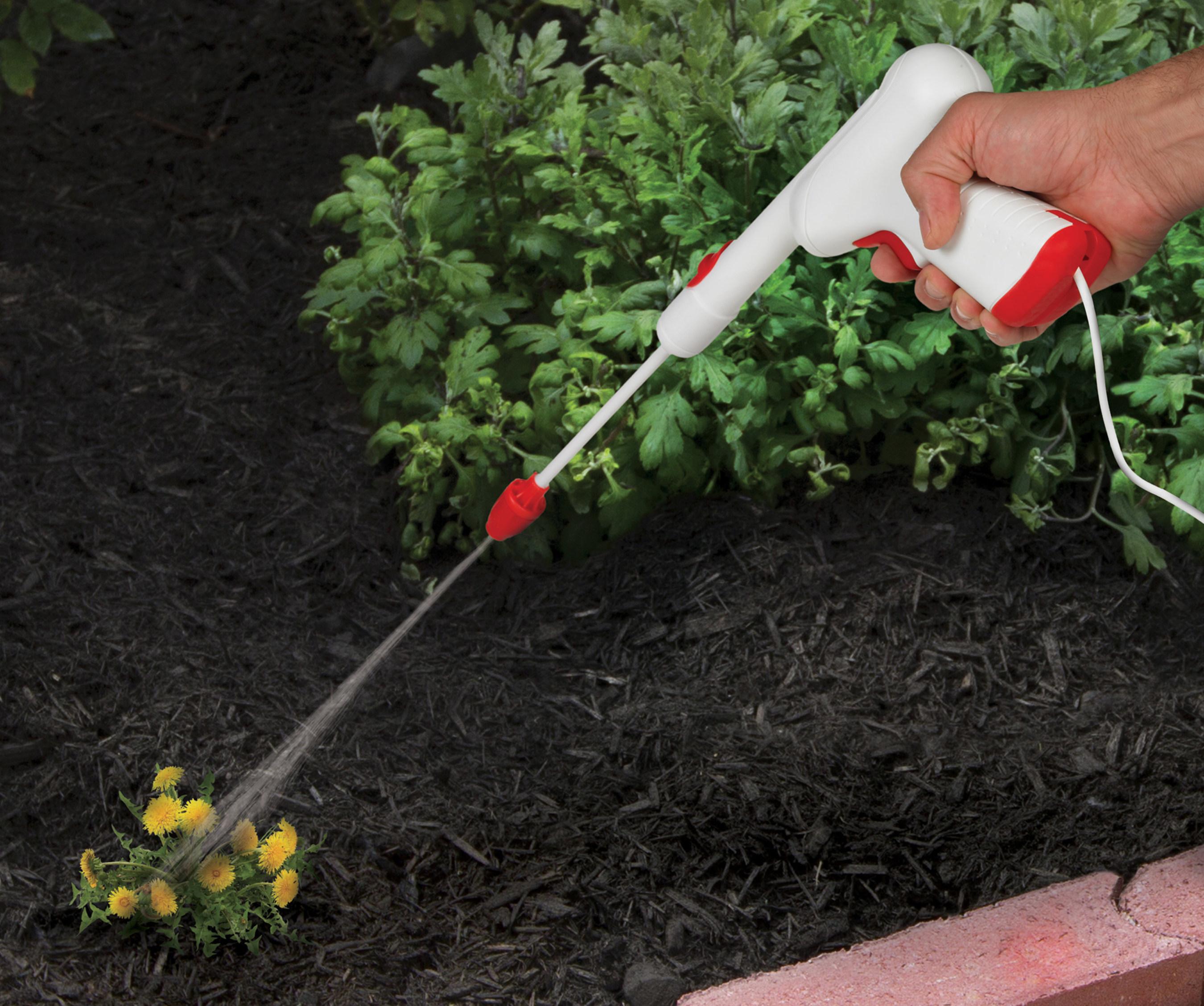Spectracide AccuShot sprayer in action.