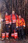 Seaweed Energy Solutions (SES) Makes Acquisition in Denmark to Cultivate 100,000 Tons of Seaweed