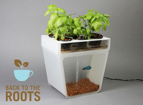 The Back to the Roots Aquaponics Garden.  (PRNewsFoto/Back to the Roots)