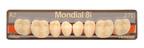 Heraeus' amazingly life-like Mondial 8i-5 degree Flat Posterior Denture Teeth.  (PRNewsFoto/Heraeus Kulzer, LLC)