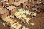IFAW: Huge ivory bust in South Sudan - goods headed for Malaysia