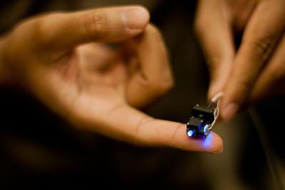 Inscopix nVista HD miniature microscope.