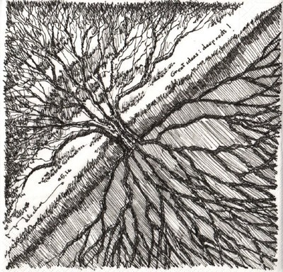 """""""This napkin sketch is the first drawing that NewSchool President Marvin J. Malecha did for the 2016 NewSchool of Architecture and Design Napkin Sketch Auction. Malecha stated, """"This drawing shows the tree not just above ground, but below, associating the strength of the tree with the strength of the root structure beneath it. For a tree--and for creativity--to flower, it must depend on the foundation below it. Great ideas require deep roots."""""""
