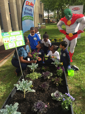 Dole Packaged Foods joins Key Food and Captain Planet Foundation to celebrate Project Learning Garden at PS 354 The Jermaine L. Green STEM Institute of Queens Elementary School