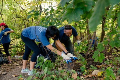 WebMD Cares Impact Day 2016 - NYC employees remove weeds and invasive plants to make the park more accessible.