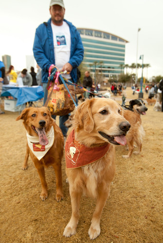 Save the Date to Raise $300,000 and Save Homeless Pets in Philadelphia at the PetSmart Charities®