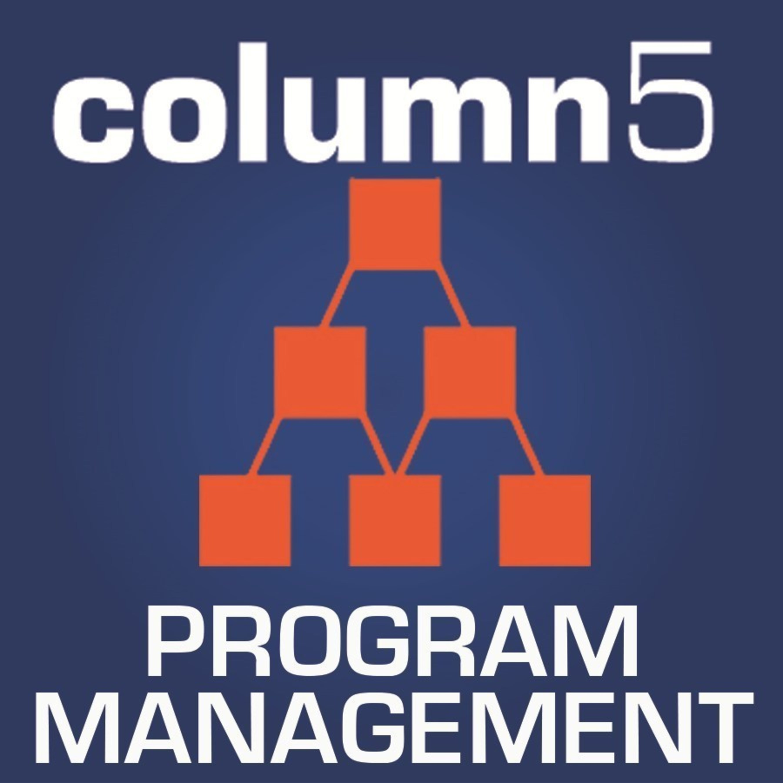 Column5 Consulting, an SAP partner, today announced that it has received accreditation for a global partner quality program by SAP SE for the 5th consecutive year.