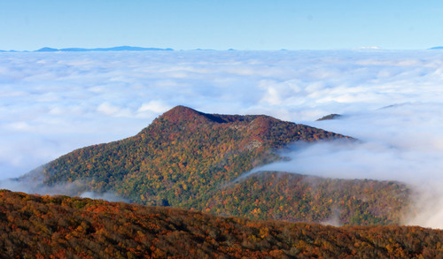 The Blue Ridge Mountains surrounding Asheville, North Carolina have one of the longest fall color seasons in ...