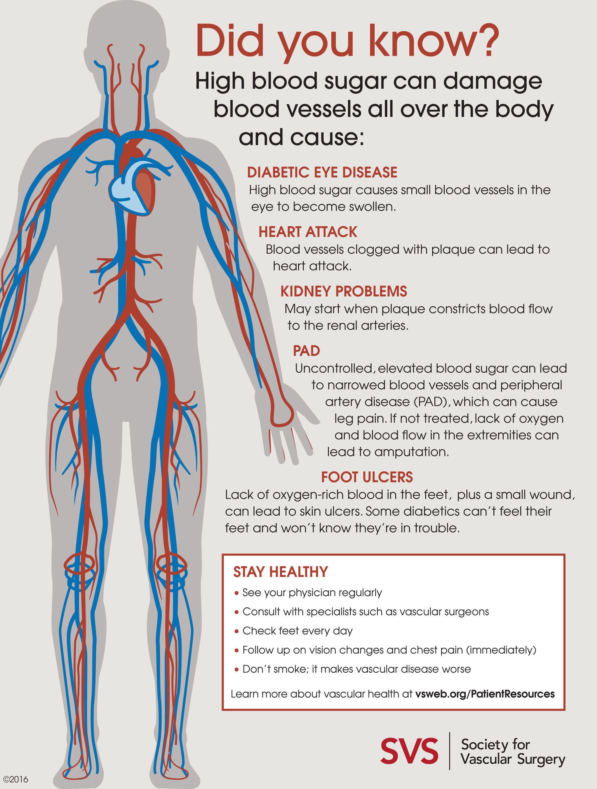 6 Diabetes Vascular Complications And How To Avoid Them