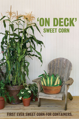 Burpee, the country's leading home gardening company, introduces the first-ever sweet corn specially bred for containers.  (PRNewsFoto/W. Atlee Burpee & Co.)