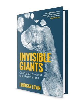 Book cover of Invisible Giants: changing the world one step at a time by Lindsay Levin. Image by Sue Gent