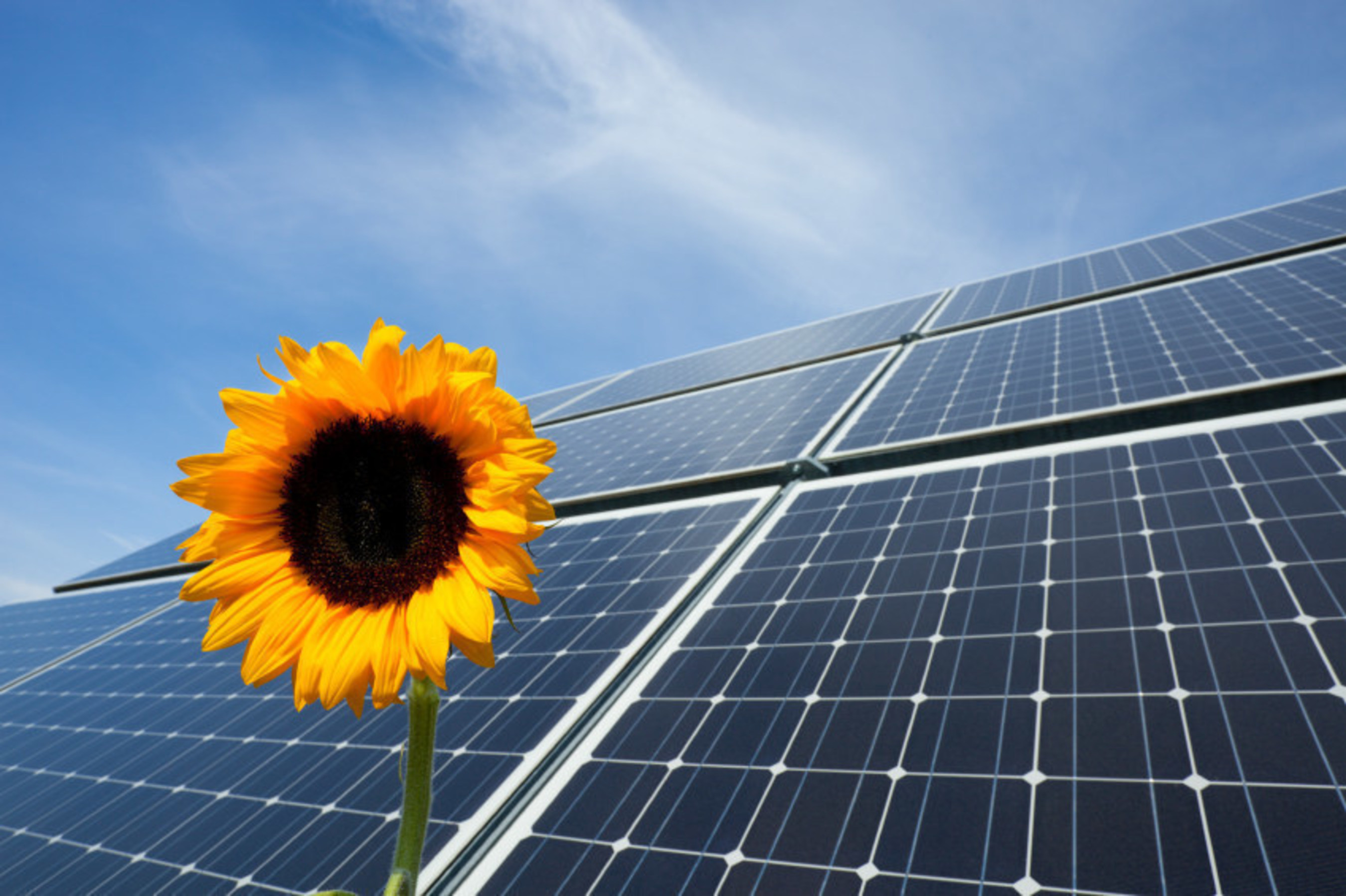 Solar Farm ITC Extension spawns new pool of Investors for