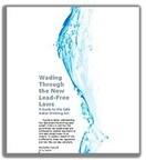 Wading Through the New Lead-Free Laws (PRNewsFoto/Flows.com)