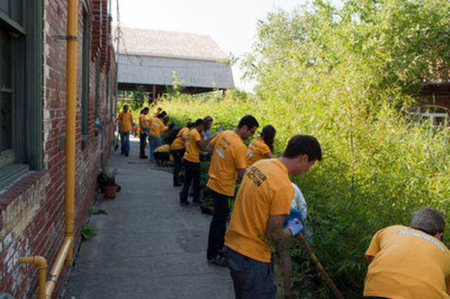 CIBC Mellon executives, summer students and other employees pitch in to plant wildflowers at Evergreen Brick Works. (CNW Group/CIBC Mellon)