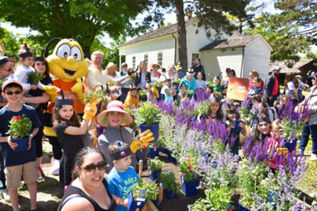 Families join gardening guru Mark Cullen and Buzz the Bee in planting a pollinator-friendly garden at Black Creek Pioneer Village. The event was in celebration of the Honey Nut Cheerios #BringBackTheBees campaign which saw the brand give away more than 115 million wildflower seeds to Canadians across the country. (Photo Credit: Shan Qiao) (CNW Group/General Mills Canada)
