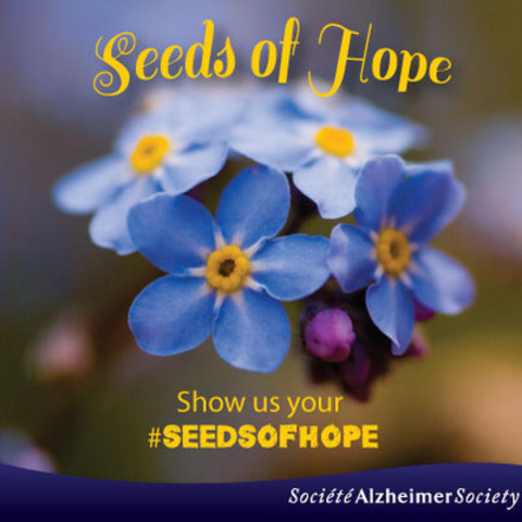 To celebrate the spring season, as of today Ontarians can order free Forget Me Not flower seeds and plant them on Saturday, May 16 as part of the second annual #SeedsofHope campaign. Visit www.alzheimerontario.ca/seedsofhope (CNW Group/Alzheimer Society of Ontario)