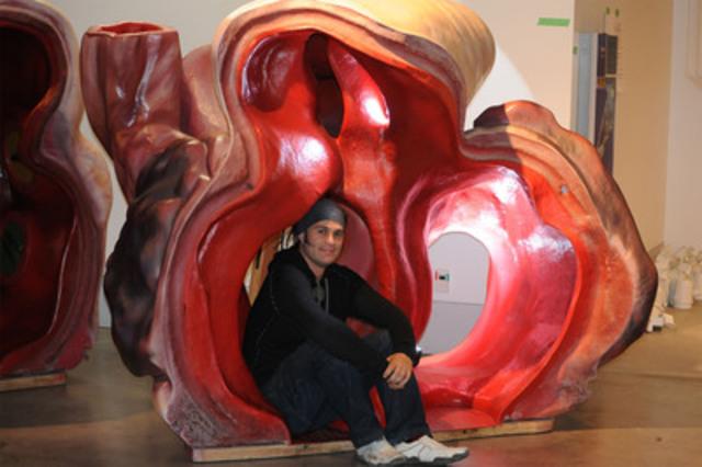 Shane James, gestionnaire des collections du Musée de Nouvelle-Zélande, peut rentrer à l'intérieur d'une artère de rorqual bleu. Ce modèle de coeur grandeur nature figurera à l'exposition Baleines Tohora, qui ouvrira le 2 mars au Musée canadien de la nature. Le rorqual bleu a le coeur lourd : cet organe peut atteindre 640 kg. (Groupe CNW/Musée canadien de la nature)
