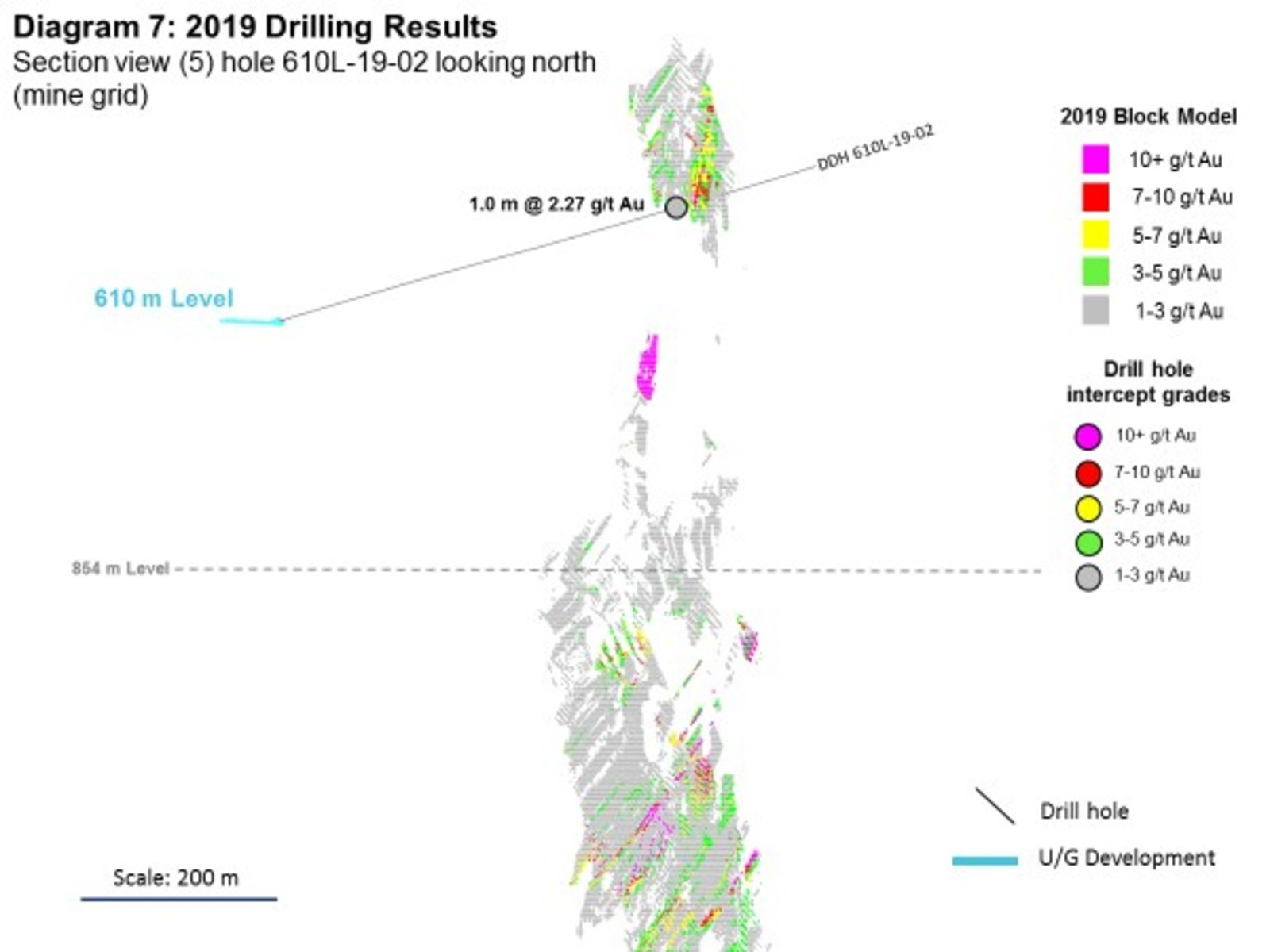 Diagram 7: 2019 Drilling Results