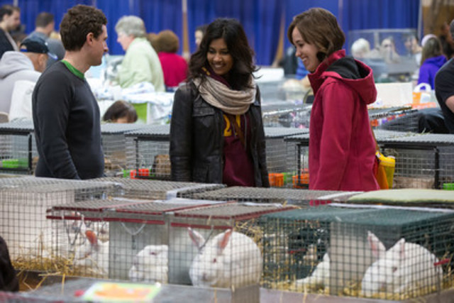 Visitors checking out the rabbits at the 2015 Royal Agricultural Winter Fair in Toronto. (CNW Group/Royal Agricultural Winter Fair)