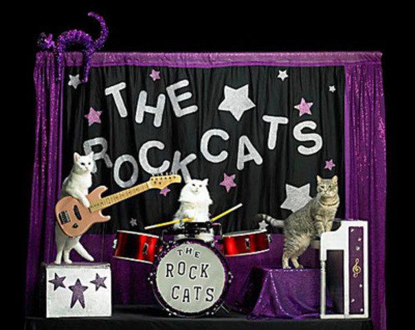 See the amazing Acro-Cats live at PawsWay. Get tickets at pawswayacrocats.eventbrite.com. (CNW Group/Nestle Purina PetCare)