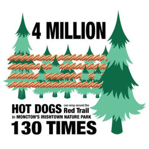 Infographie de Moncton (Groupe CNW/Les Aliments Maple Leaf Inc.)