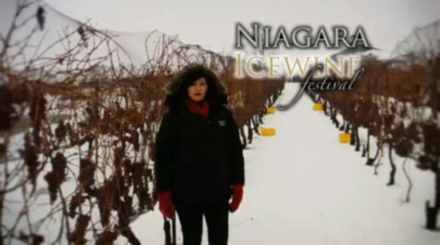Video: Niagara Icewine Festival and Gala