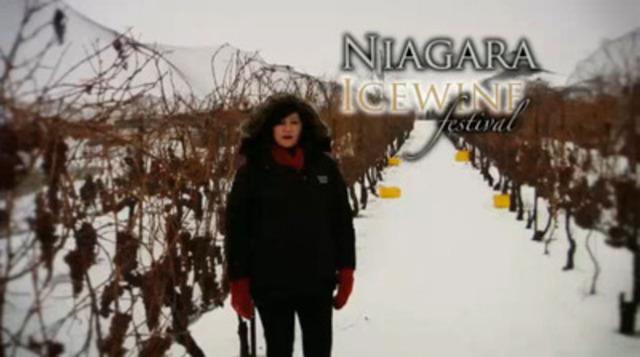 Video: Niagara Icewine Festival and Gala