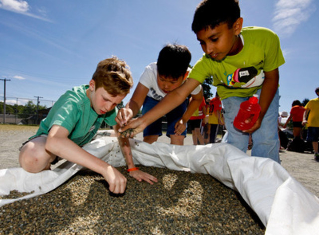 The Child Labour Challenge. Students at General Brock Elementary in Vancouver endure a mining simulation to ...