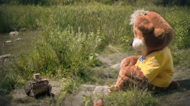 Video: Zeddy is in the woods and he needs some help. Watch the video and then tell us if you can give him a new name, a new home and a new job.