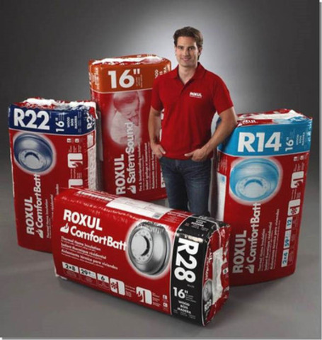 """WIN a design consultation with Income Property Host Scott McGillivray, $10,000 toward your remodel and $1,200 in Roxul product with Roxul's """"Get Between The Studs"""" contest.  Visit http://www.getbetweenthestuds.com to enter. (CNW Group/Roxul Inc.)"""