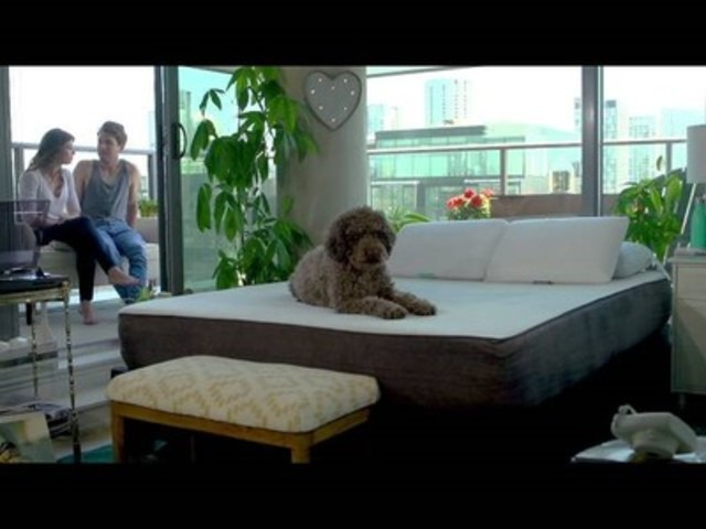 Video: Sleep Envie - Your bed is more than a mattress.