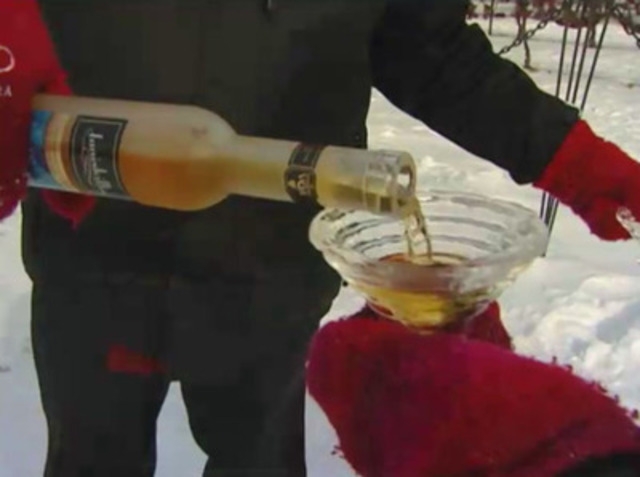 Video: Niagara-on-the-Lake Icewine Festival Video 2012