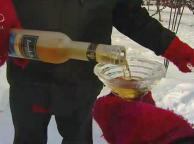 Video: Niagara-on-the-Lake Icewine Festival Video 2012