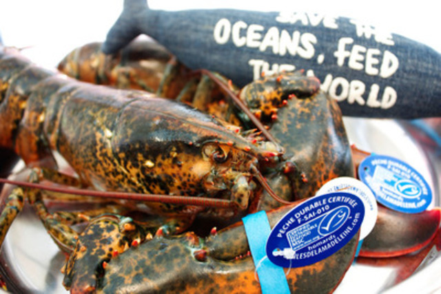 Le chef Normand Laprise apporte son soutien à la campagne « Sauvons les océans pour nourrir le monde ». (Groupe CNW/Restaurant Toqué!)
