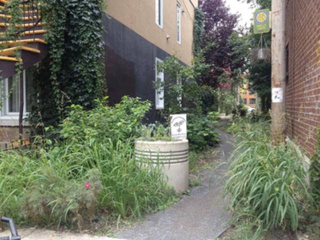Tronçon champêtre d'une ruelle verte du Plateau-Mont-Royal. (Groupe CNW/Ville de Montréal - Arrondissement du Plateau-Mont-Royal)